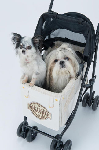 ROYAL POOCH × MotherCart コラボカート