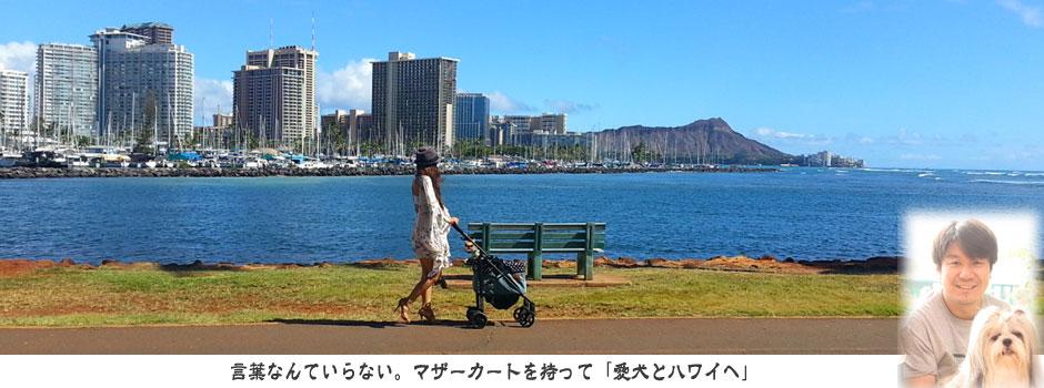 ペット(愛犬)とハワイへ